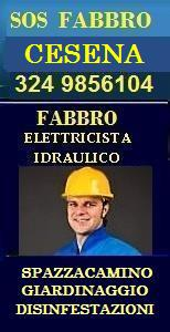 Fabbro cesena